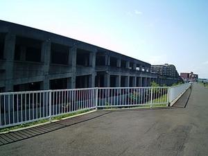 SUNP0057.JPG