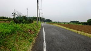 DSC05416.JPG